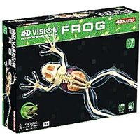 4D Vision Full Skeleton Frog Anatomy Model