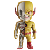 XXRAY DC Reverse Flash