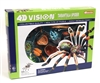 4D Vision Tarantula Anatomy Model