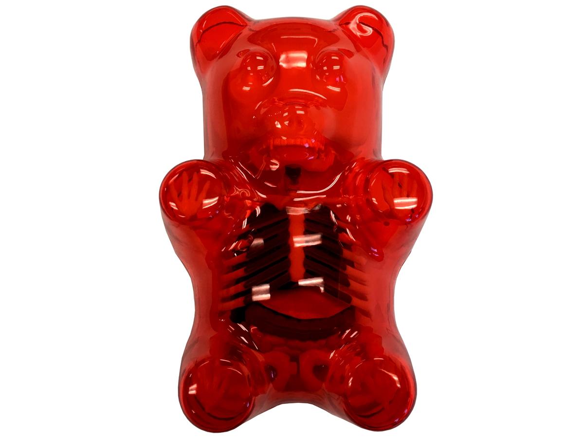 Red Gummi Bear Anatomy Model by Jason Freeny